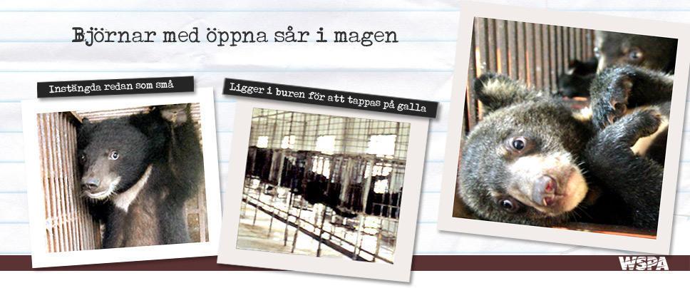 Blogg Stockholm arkiv - Sida 34 av 51 - Cam   Co 6fc9c0265d91c